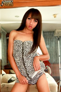 cute asian teen tranny posing